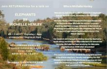 Elephants by Michelle Henley